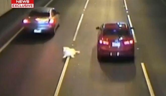 Ο σκύλος σέρνεται στη μέση αυτοκινητόδρομου