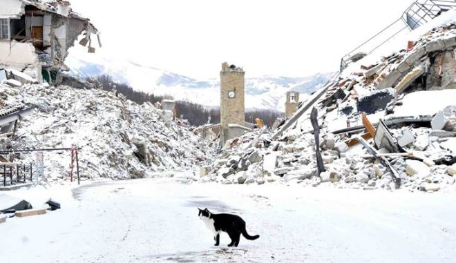 A cat wanders amid rubbles in the quake-hit town of Amatrice, central Italy, covered by a white blanket of snow, Thursday, Jan. 5, 2017. An August 24 earthquake killed almost 300 people last year in central Italy and was followed by further devastating shakes in October. (Emiliano Grillotti/ANSA via AP)