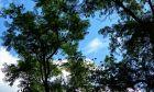 Φθινοπωρινό στιγμιότυπο