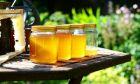Μέλι και μήνας του μέλιτος