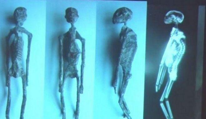 Οργιάζουν οι θεωρίες συνωμοσίας: Οι 'εξωγήινες μούμιες' του Περού είναι αληθινές, λέει επιστήμονας