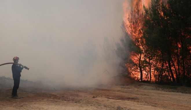 Fire extinguishing at Mikrochori region in eastern Attica on August 15, 2017. /     , 15  2017.