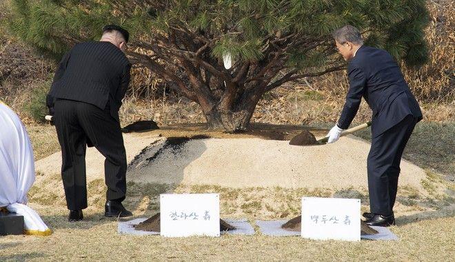Κιμ Γιονγκ Ουν και Μουν Τζε Ιν φύτευσαν συμβολικά ένα δέντρο