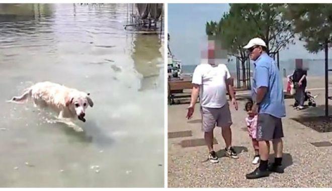 Βίντεο: Σκύλος βουτάει σε συντριβάνι και ο ιδιοκτήτης του 'τ' ακούει' από περαστικό