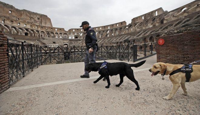 Αστυνομικοί με ειδικά εκπαιδευμένα σκυλιά, ελέγχουν το Κολοσσαίο καθώς οι απειλές για τρομοκρατικό χτύπημα έχουν πολλαπλασιαστεί ενόψει του Καθολικού Πάσχα