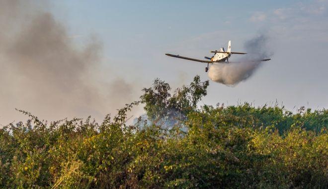 Καύσωνας: Πολύ υψηλός κίνδυνος φωτιάς την Πέμπτη