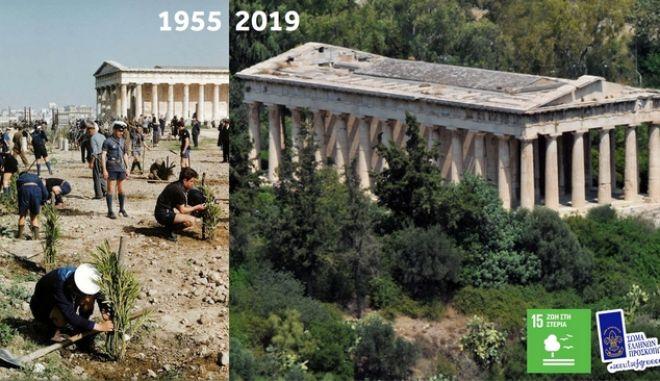 Πρόσκοποι Ελλάδας: Δίνουν το παράδειγμα φυτεύοντας 50.000 δέντρα σε ένα χρόνο