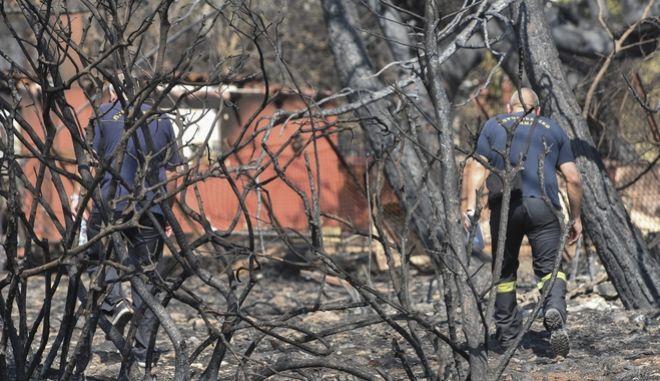 Πυροσβέστες αναζητούν αγνοούμενους στο Μάτι