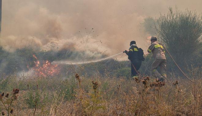 Πυρκαγιά σε δασική έκταση στο Γραμματικό Ηλείας την Παρασκευή 24 Ιουλίου 2020