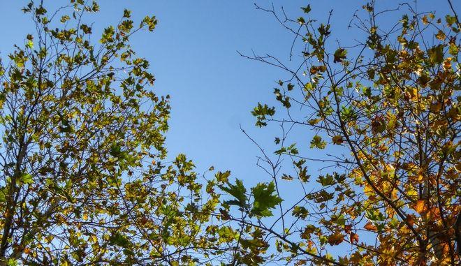 Φθινοπωρινός καιρός με καλές θερμοκρασίες