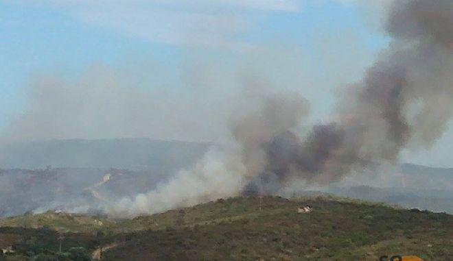 Χαλκιδική: Σε ύφεση η φωτιά στην Ουρανούπολη