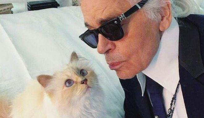 """Η γάτα του Καρλ Λάγκερφελντ, """"Choupette"""""""
