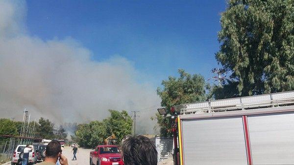 Οριοθετήθηκε η φωτιά στο Κρυονέρι