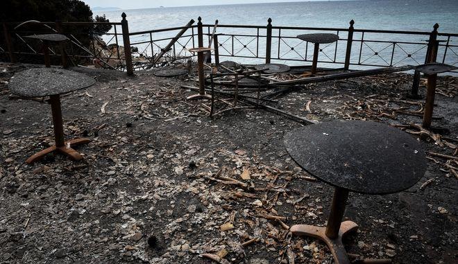 Πυρκαγιά στην περιοχή της Ραφήνας