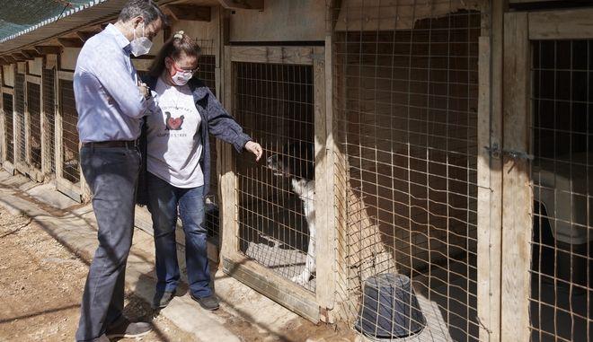 O Κυριάκος Μητσοτάκης στο καταφύγιο άστεγων ζώων