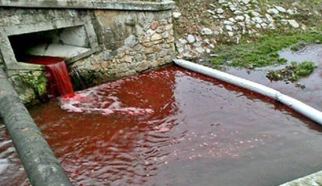 """Locals in a small Slovakian town woke in horror this week when they found a river running through their small town flowing bright red with....blood.  Roman Podbrezova, 65, from the foothill town of Myjava in Slovakia, had gone for a morning walk when he saw the river which runs through the centre of the town bubbling with blood.  """"I just could not believe my eyes,"""" he said.""""The river was dark red. It was like something from a horror film. Blood cascading through the centre of town.""""  Another local said: """"This is really creepy. Yesterday evening I walked past here and it was it's normal beautiful bluey-green.  """"Now it looks like someone slaughtered 1,000 virgins or something. I'm not superstitious, and we've never had any serial killers or anything like that here, but this isn't normal.  """"How could a river fill with blood without some seriously evil event behind it?' he said.I immediately called the police.""""  Police spokesman Elena Antalova said: """"We are checking the source of the blood and what caused it.  """"At the moment we are thinking it could have come from dead fish or maybe someone washed a barrel containing blood in the river.  """"It seems it came from the drains directly above the museum,"""" she said.  Another possible answer to the mystery may be a slaughterhouse several miles upstream on the River Myjava.  Usually its water is pumped into a retaining pool where it is filtered before being released into the river.  Police think the filtration system my have gone awry."""