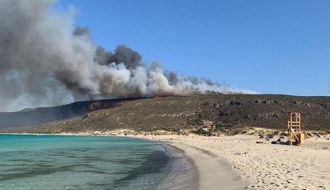Φωτιά στην Ελαφόνησο: Τεράστια οικολογική και οικονομική καταστροφή - Έφυγαν 10.000 άνθρωποι