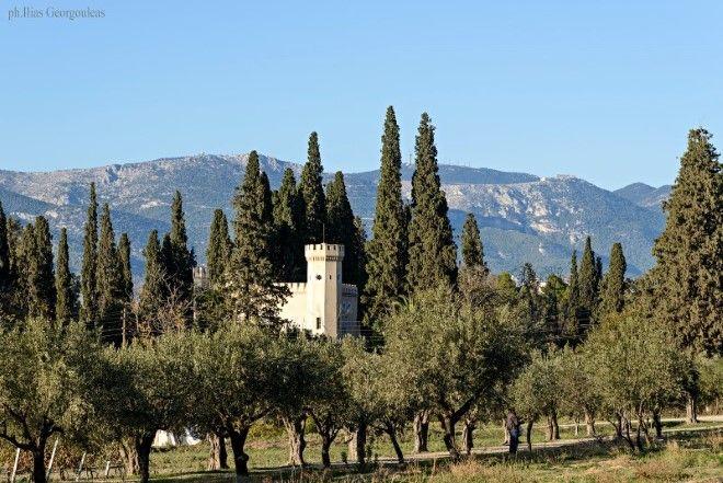 Σ' αυτόν τον μαγικό Πύργο στο Ίλιον δοκιμάζεις κρασιά και τρως χορτόπιτα δίπλα στους αμπελώνες