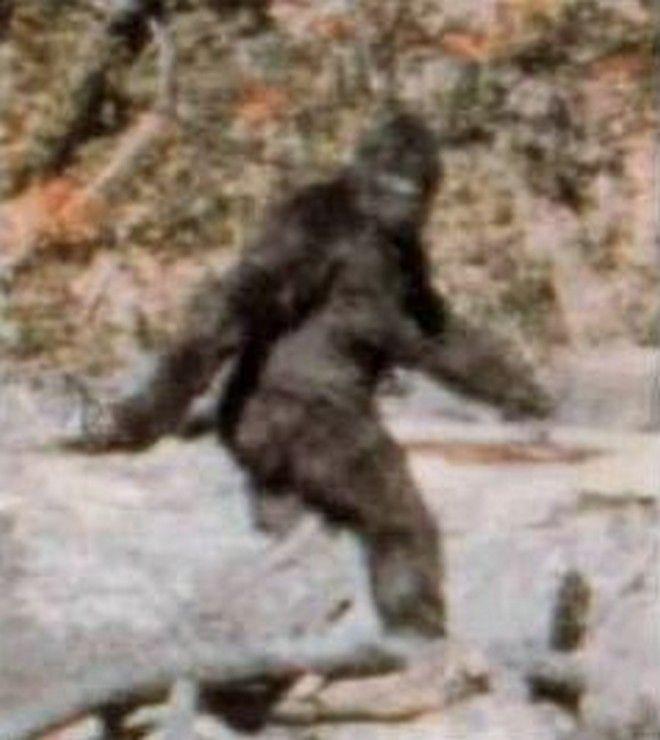 Φωτογραφίες: Το τέρας του Λοχ Νες και η παρέα του. 13 πλάσματα που δεν υπήρξαν ποτέ