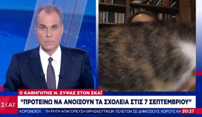 """Σύψας: Η γάτα του εισέβαλε στο πλάνο ενώ ήταν """"στον αέρα"""""""