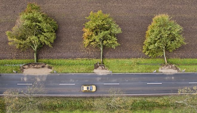 The aerial view shows three uprooted trees at a road near Hildesheim, Germany Friday, Oct. 6, 2017. Seven people died Thursday as high winds knocked over trees and caused widespread travel chaos in northern Germany. (Julian Stratenschulte/dpa via AP)