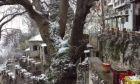 Εικόνα από το χιονισμένο Πήλιο