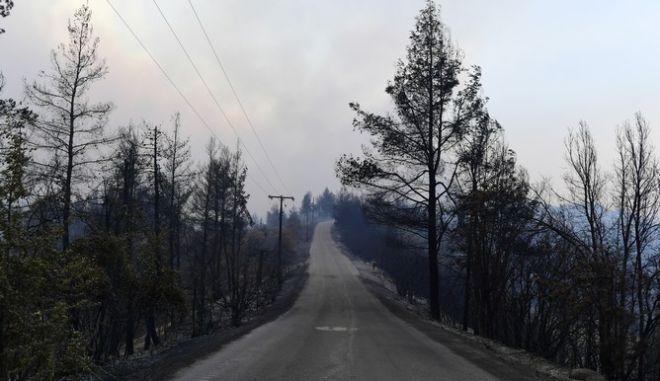 Δρόμος στη βόρεια Εύβοια μετά τις πυρκαγιές