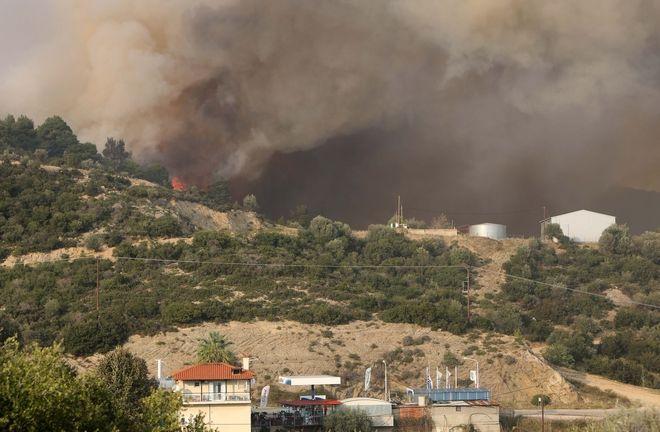 Φωτιά σε δασική έκταση στη Σιθωνία Χαλκιδικής