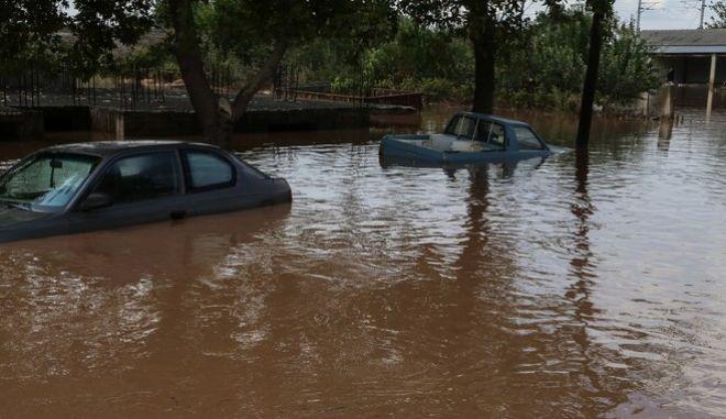 """Πλημμύρες στην περιοχή Σταυρός Φαρσάλων από την κακοκαιρία """"Ιανός"""" το Σάββατο 19 Σεπτεμβρίου 2020"""