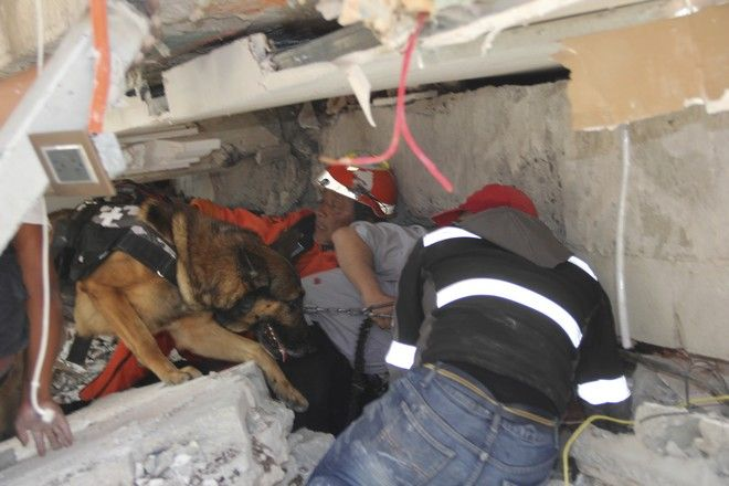 Rescue workers and a trained dog search for children trapped inside the collapsed Enrique Rebsamen school in the Coapa area of Tlalpan, Mexico City, Tuesday, Sept. 19, 2017. A 7.1 earthquake stunned central Mexico, killing more than 100 people as buildings collapsed in plumes of dust. (AP Photo/Carlos Cisneros)
