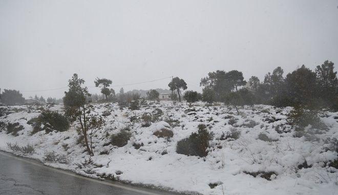 Χιονόπτωση στη Πεντέλη, Πέμπτη 29 Δεκεμβρίου 2016. (EUROKINISSI/ΣΤΕΛΙΟΣ ΜΙΣΙΝΑΣ)