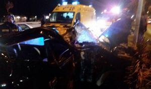 Νέο τροχαίο στην Κρήτη: ΙΧ ξερίζωσε φοίνικες - Σοβαρά τραυματισμένος ο οδηγός