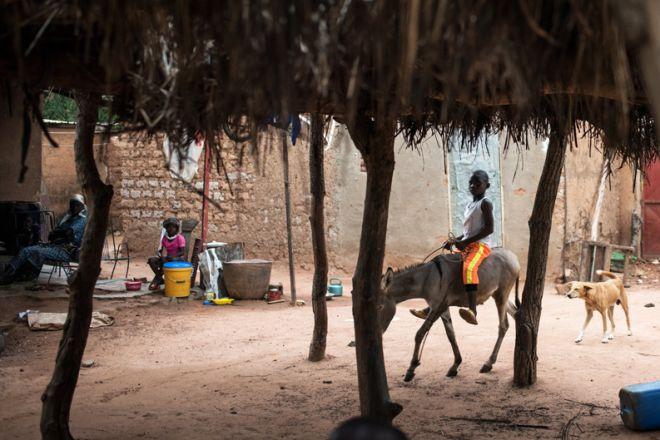 Η ζωή στην Bougoula αποτυπώνει τις προκλήσεις που αντιμετωπίζουν οι άνθρωποι σε μια περιοχή όπου η νόσος είναι σύνηθες φαινόμενο. Όταν κάποιος αρρωσταίνει, οι υπόλοιποι πρέπει να αναπληρώσουν το κενό.
