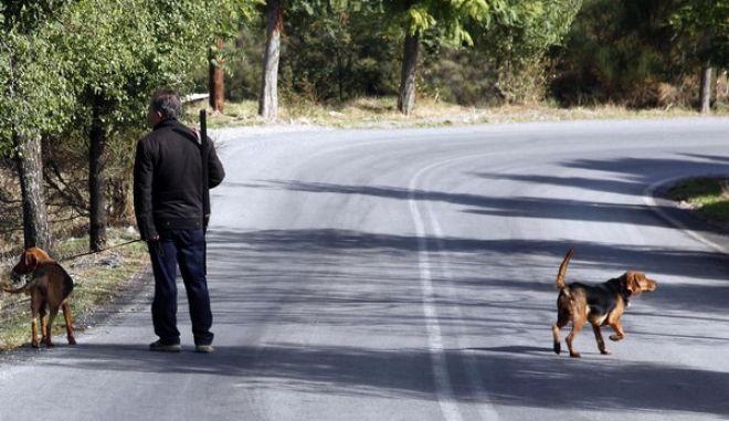 Ενας κυνηγός με τα σκυλιά του σε στιγμιότυπο έξω απο τον οικισμό της Στεμνίτσας (EUROKINISSI / ΧΑΣΙΑΛΗΣ ΒΑΪΟΣ)