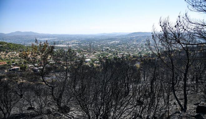 Πυρκαγιά στον Υμηττό που ξεκίνησε την νύχτα από την περιοχή της Παιανίας, την Δευτέρα 12 Αυγούστου 2019. (EUROKINISSI/ΜΙΧΑΛΗΣ ΚΑΡΑΓΙΑΝΝΗΣ)