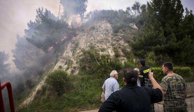 Πυρκαγιά στην Ηλεία, στην Φρίξα, τη Σκιλλουντία και την παλιά Σκιλλουντία του δήμου Ανδρίτσαινας - Κρεστένων