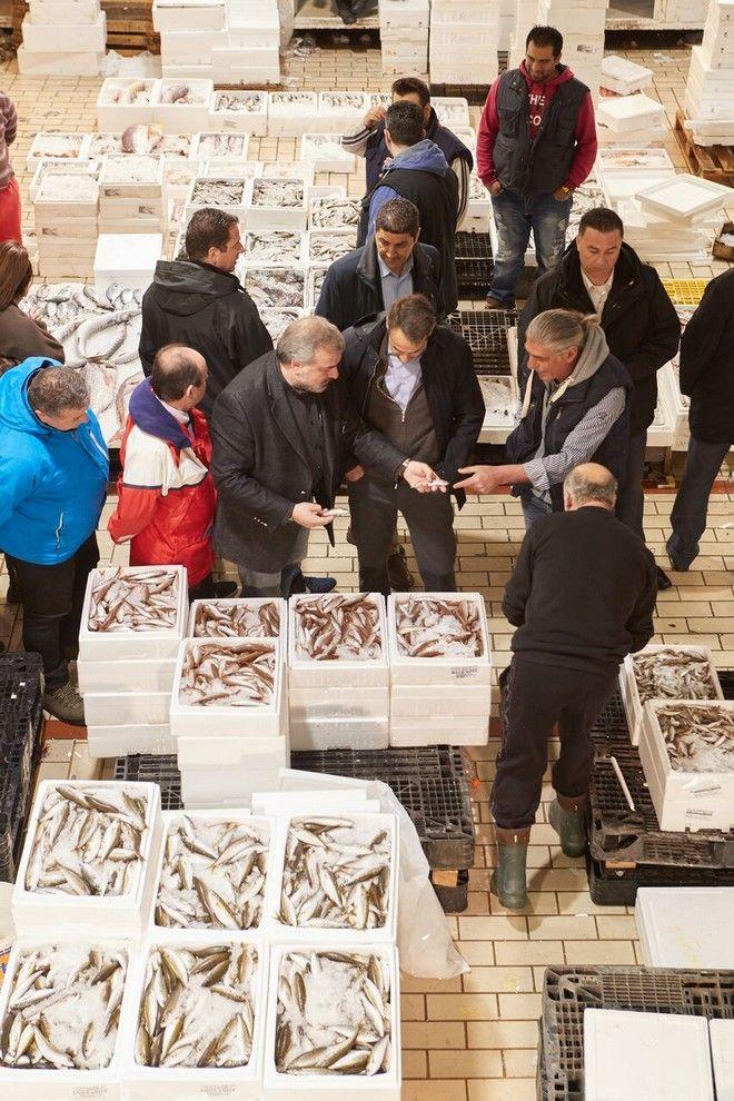Μητσοτάκης: Να πείσουμε περισσότερους νέους να ασχοληθούν με την αλιεία