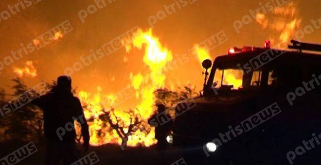 Ηλεία: Σε χαράδρα μαίνεται η πυρκαγιά - Σηκώθηκαν δύο καναντέρ