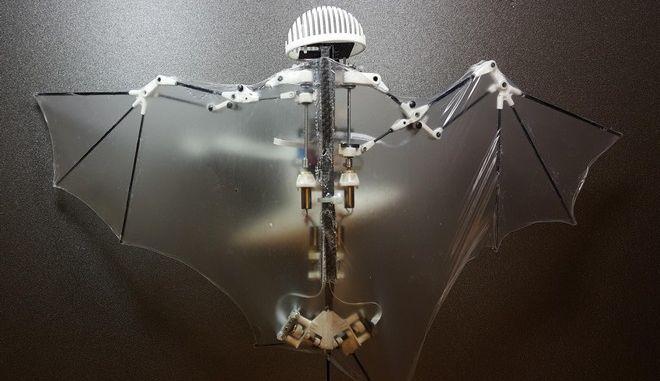 Δημιουργήθηκε το πρώτο ρομπότ-νυχτερίδα