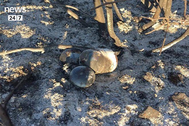 Φωτογραφίες και βίντεο ντοκουμέντο: Ενδείξεις ή αποδείξεις για εμπρησμό στον Κάλαμο;
