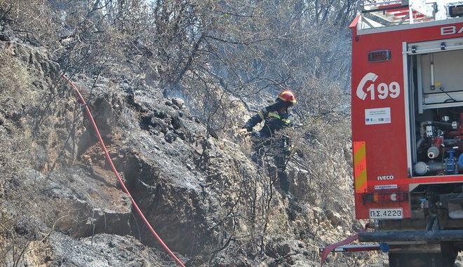 Στιγμιότυπα από τα μέτωπα των πυρκαγιών των τελευταίων ημερών. Στιγμιότυπα από τα χωριά Aνω Βολίμα-Ασκός . Τετάρτη 16 Αυγούστοτ 2017. (EUROKINISSI / ΗΜΕΡΑ ΖΑΚΥΝΘΟΥ)