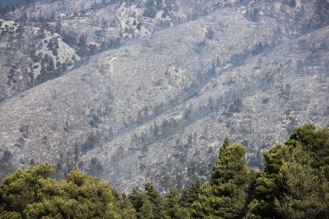Για τρίτη μέρα μαίνεται η μεγάλη φωτιά στην Εύβοια