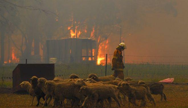 H φωτιά στη Νέα Νότια Ουαλία