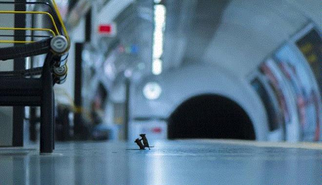 Μετρό του Λονδίνου