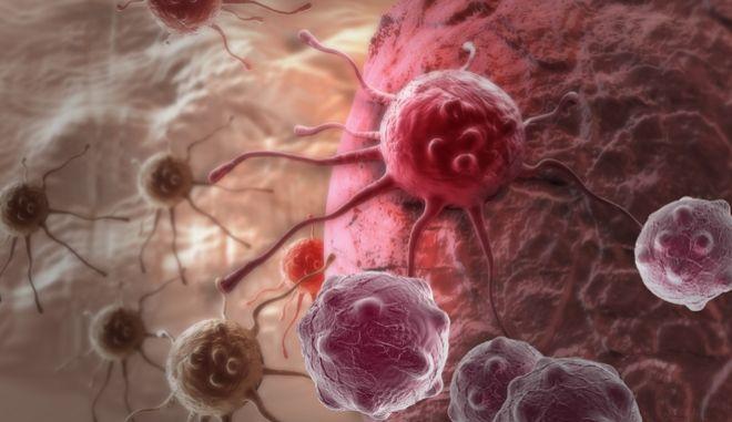 ψηφιακή αναπαράσταση καρκινικών κυττάρων