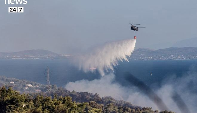 Στάχτη και αποκαΐδια ο Κάλαμος: Η εικόνα μετά τη φωτιά kalamos09c