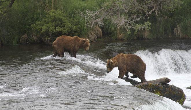 Αλάσκα (Φωτο Αρχείου)