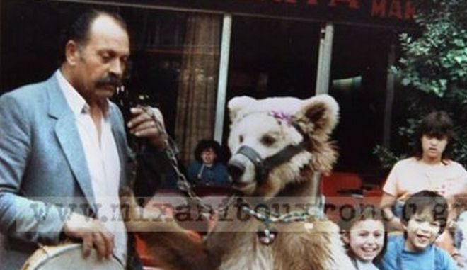 Μηχανή του Χρόνου:Η σύλληψη της αρκούδας στα Εξάρχεια και η φυλάκισή της σε κελί