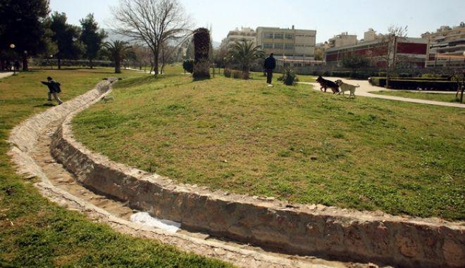 Στιγμιότυπo από το πάρκο του Σκοπευτηρίου της Καισαριανής