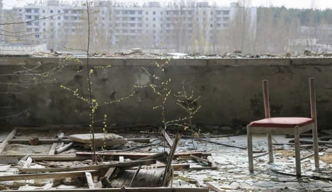 In this photo taken Wednesday, April 5, 2017, small trees grow on a balcony in the deserted town of Pripyat, some 3 kilometers (1.86 miles) from the Chernobyl nuclear power plant Ukraine. Once home to some 50,000 people whose lives were connected to the Chernobyl nuclear power plant, Pripyat was hastily evacuated one day after a reactor at the plant 3 kilometers (2 miles away) exploded on April 26, 1986. The explosion and the subsequent fire spewed a radioactive plume over much of northern Europe. (AP Photo/Efrem Lukatsky)